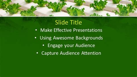 Free Greenhouse PowerPoint Template - Free PowerPoint